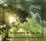 Journey to zoe life